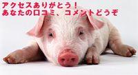 大井町のグルメの守護神の豚 サイトの反映を祈ったら参上しました。本当か!?